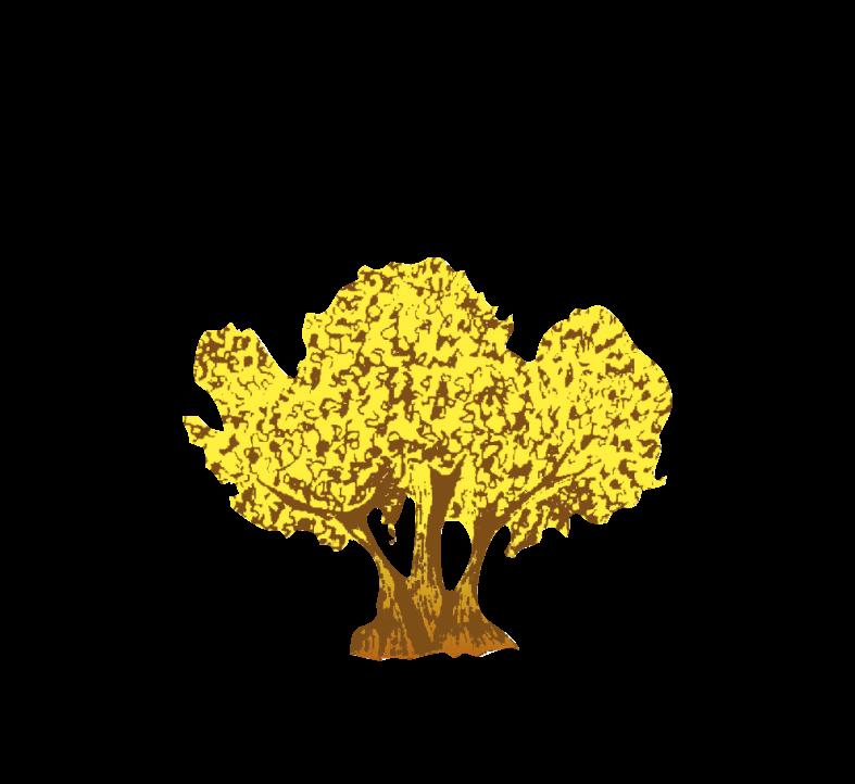 logo_valles_web